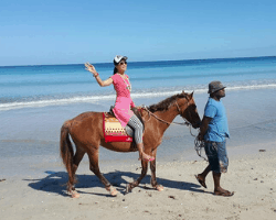 Millie Leung Fiji Horseback Riding